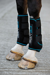 Ice Vibe Boot by Horseware *