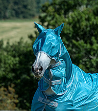 Freedom Fly Mask classic