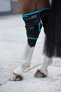 Ice Vibe by Horseware Hock wrap
